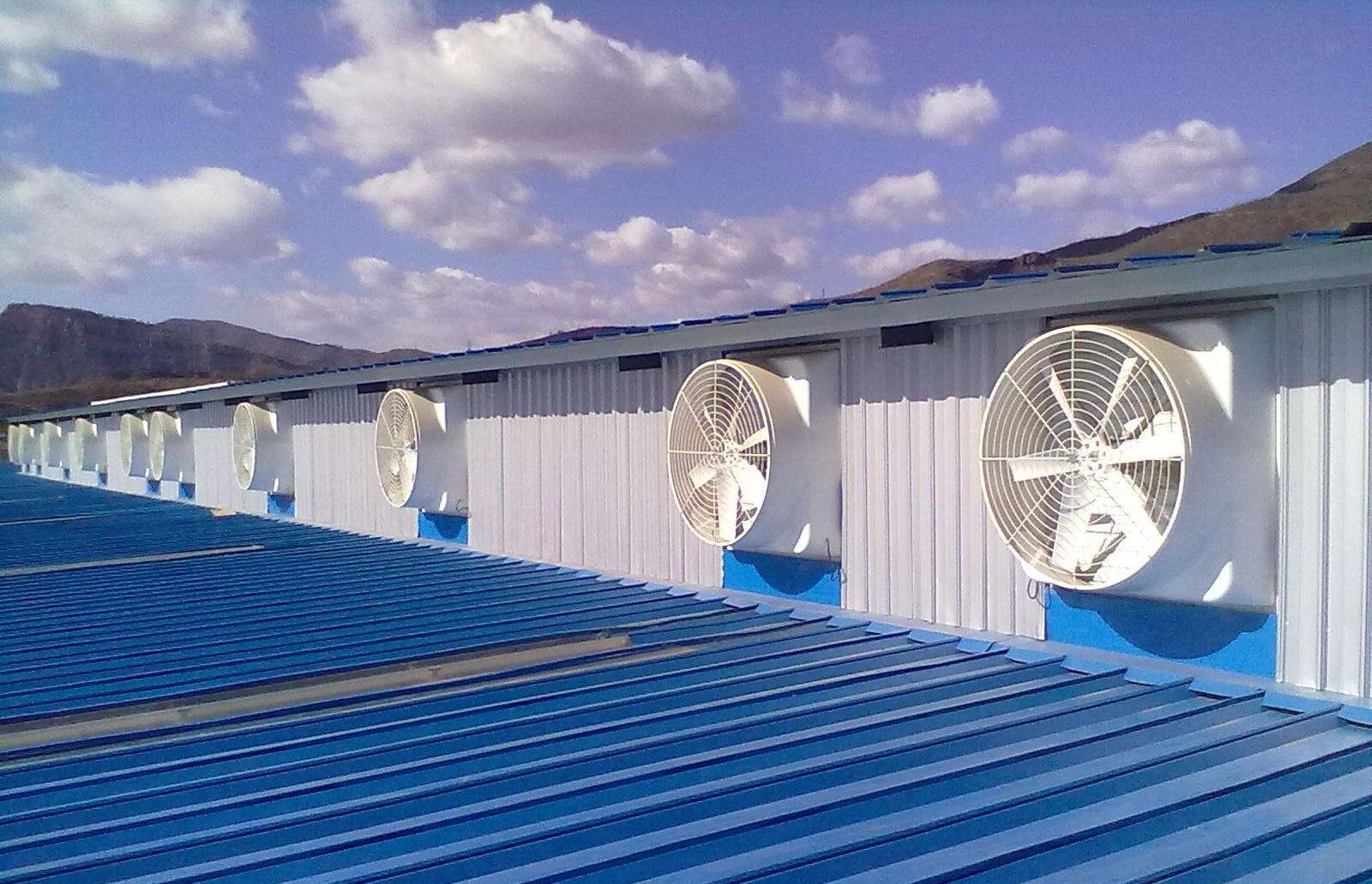 水帘风机竞博jbo首页系统在温室大棚中起到什么样的作用?种植业通风竞博jbo首页需了解下